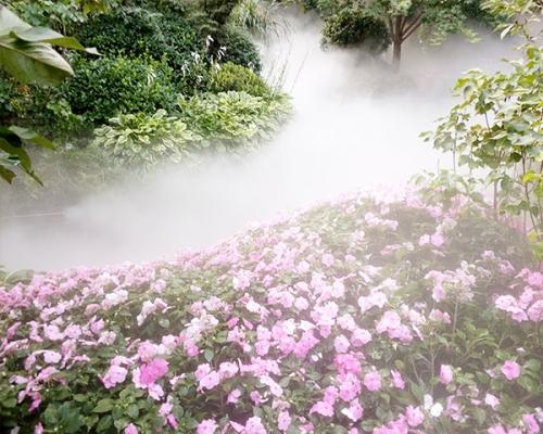 公园喷雾造景